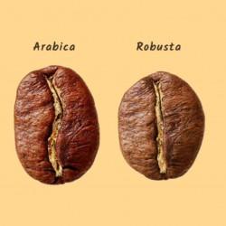Caffè del Professore un caffè macinato in polvere con Robusta e Arabica